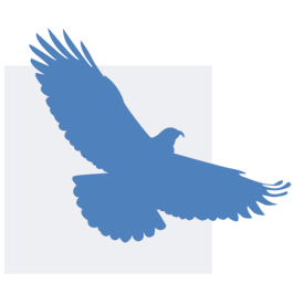 independNET flying bird logo